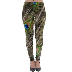 Green Peacock Feathers Color Plumage Lightweight Velour Leggings by Pakrebo