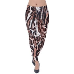 Luxury Animal Print Velvet Leggings by tarastyle