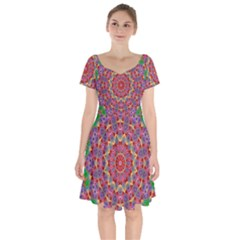 Background Image Decorative Short Sleeve Bardot Dress