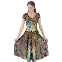 Bird Peacock Feather Cap Sleeve Wrap Front Dress by Desi8477