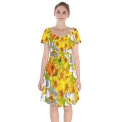 Daffodil Surprise Short Sleeve Bardot Dress