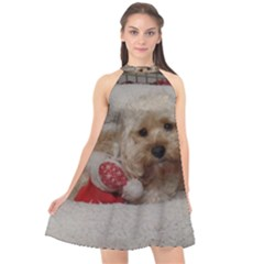 Cockapoo In Dog s Bed Halter Neckline Chiffon Dress