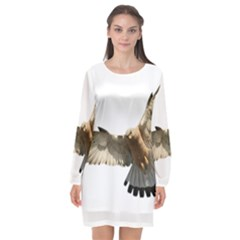 Eagle Long Sleeve Chiffon Shift Dress