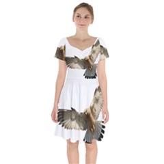 Eagle Short Sleeve Bardot Dress