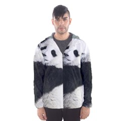 Panda Bear Sleeping Hooded Windbreaker (men) by Sudhe