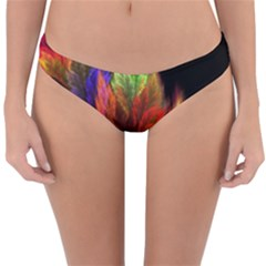 Abstract Digital Art Fractal Reversible Hipster Bikini Bottoms by Sudhe