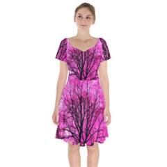 Pink Silhouette Tree Short Sleeve Bardot Dress by Sudhe