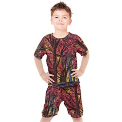 Autumn Colorful Nature Trees Kids  Tee And Shorts Set by Sudhe