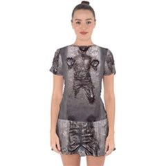 Han Solo Drop Hem Mini Chiffon Dress