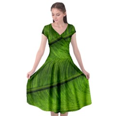 Green Leaf Plant Freshness Color Cap Sleeve Wrap Front Dress by Pakrebo
