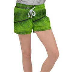 Green Leaf Plant Freshness Color Women s Velour Lounge Shorts by Pakrebo