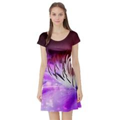 Clematis Structure Close Up Blossom Short Sleeve Skater Dress
