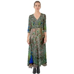 Peacock Bird Animal Feather Button Up Boho Maxi Dress by Pakrebo