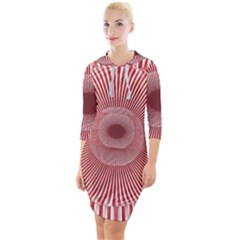 Fractals Abstract Pattern Flower Quarter Sleeve Hood Bodycon Dress