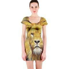 Lion Lioness Wildlife Hunter Short Sleeve Bodycon Dress