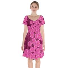 Cherry Blossoms Floral Design Short Sleeve Bardot Dress