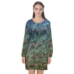 Peacock Feathers Colorful Feather Long Sleeve Chiffon Shift Dress