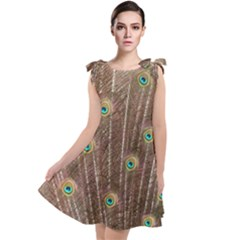 Peacock Feather Bird Exhibition Tie Up Tunic Dress by Pakrebo