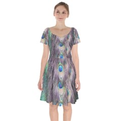 Peacock Bird Pattern Short Sleeve Bardot Dress