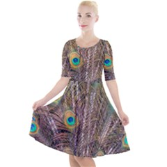 Pen Peacock Wheel Plumage Colorful Quarter Sleeve A Line Dress by Pakrebo