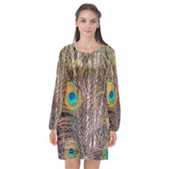 Pen Peacock Wheel Plumage Colorful Long Sleeve Chiffon Shift Dress