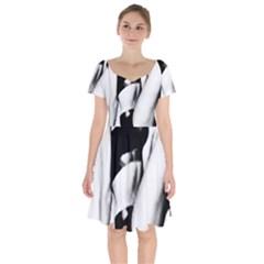 Pinup Girl Short Sleeve Bardot Dress
