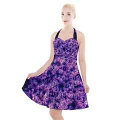 Queen Annes Lace In Purple And White Halter Party Swing Dress  by okhismakingart