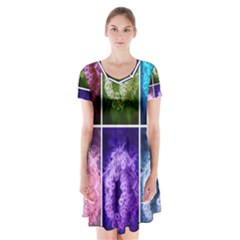Closing Queen Annes Lace Collage (horizontal) Short Sleeve V Neck Flare Dress by okhismakingart