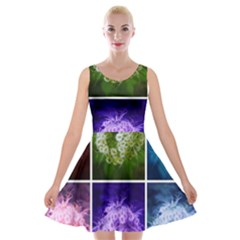 Closing Queen Annes Lace Collage (horizontal) Velvet Skater Dress by okhismakingart