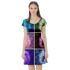 Closing Queen Annes Lace Collage (vertical) Short Sleeve Skater Dress by okhismakingart