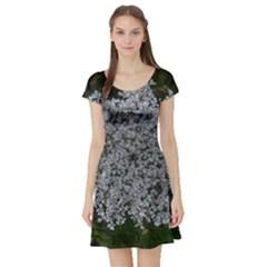 Queen Annes Lace Original Short Sleeve Skater Dress by okhismakingart