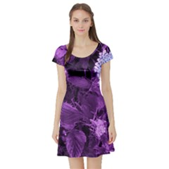 Queen Anne s Lace With Purple Leaves Short Sleeve Skater Dress by okhismakingart