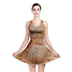 Shell Fossil Ii Reversible Skater Dress by okhismakingart