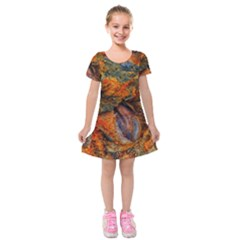 Rainbow Fossil Kids  Short Sleeve Velvet Dress