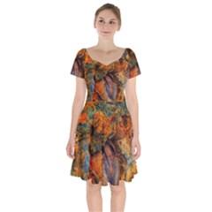 Rainbow Fossil Short Sleeve Bardot Dress