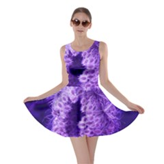 Dark Purple Closing Queen Annes Lace Skater Dress by okhismakingart