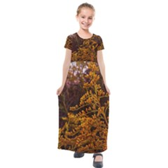 Goldenrod Version Ii Kids  Short Sleeve Maxi Dress by okhismakingart