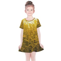 Gold Goldenrod Kids  Simple Cotton Dress by okhismakingart
