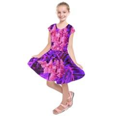 Pink And Blue Sideways Sumac Kids  Short Sleeve Dress by okhismakingart