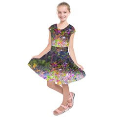 Magic Butterfly Kids  Short Sleeve Dress by okhismakingart