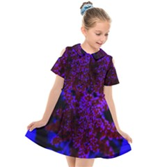 Maroon And Blue Sumac Bloom Kids  Short Sleeve Shirt Dress by okhismakingart