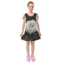 White Angular Rose Kids  Short Sleeve Velvet Dress by okhismakingart