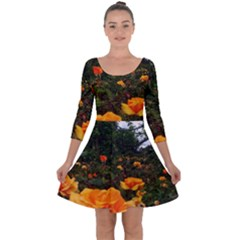 Orange Rose Field Quarter Sleeve Skater Dress by okhismakingart