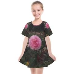 Pink Rose Field Ii Kids  Smock Dress by okhismakingart