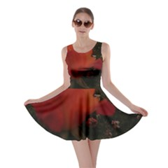 Rose Landscape Skater Dress by okhismakingart