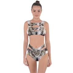 Vector Hand Painted Owl Bandaged Up Bikini Set  by Sudhe