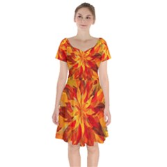 Flower Blossom Red Orange Abstract Short Sleeve Bardot Dress