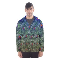 Peacock Feathers Colorful Feather Men s Hooded Windbreaker by Pakrebo