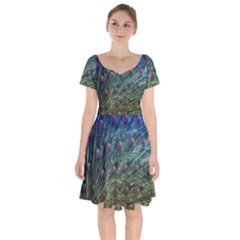 Peacock Feathers Colorful Feather Short Sleeve Bardot Dress