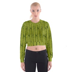 Fern Texture Nature Leaves Cropped Sweatshirt by Nexatart